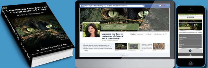 TotalSnap site and Facebook App is an excellent tool for authors!